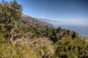 View-of-Big-sur