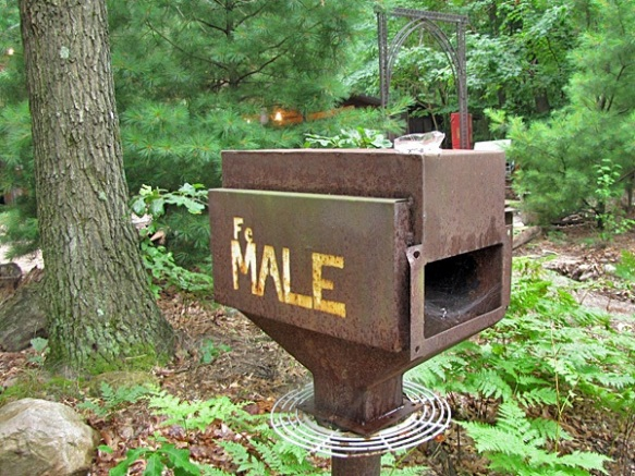 Saugatuck Fe MALE Box