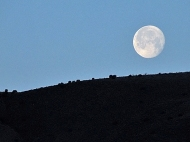 New Mexico Moonset