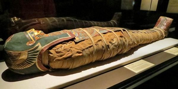 Mystery of the Mummy | RegenAxe