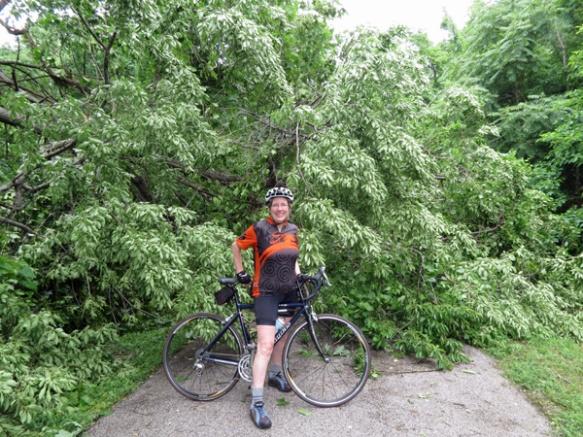 Storm Damage on a Edwardsville Bike Path
