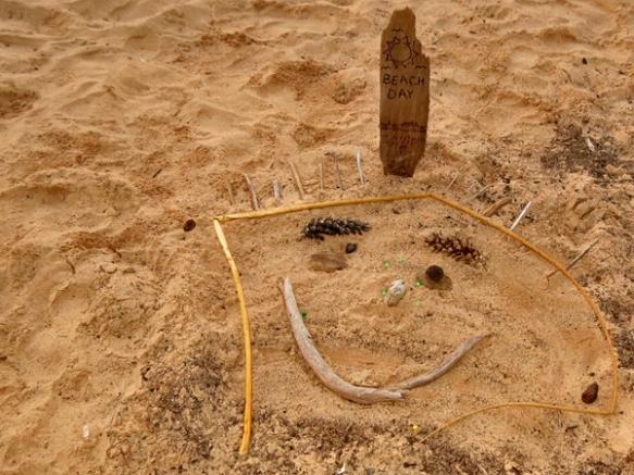 Carl's Beach Art