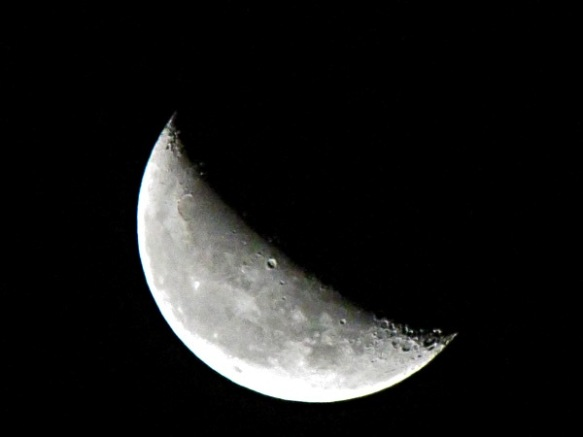 Last Saturday's Moon