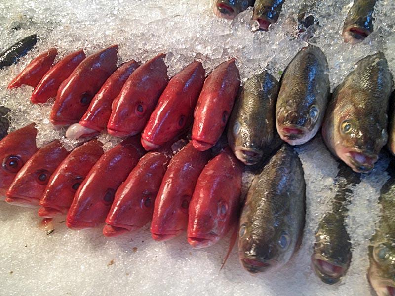 Phil s fish market regenaxe for Phil s fish market
