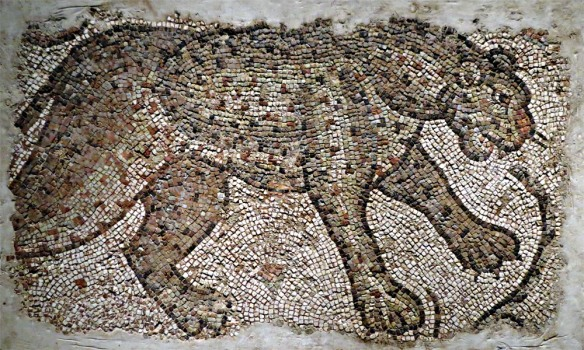 Mosaic Fragment with Leopard, Byzantine, northern Syria, 450/500