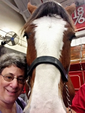 Joanie and Her Clydesdale