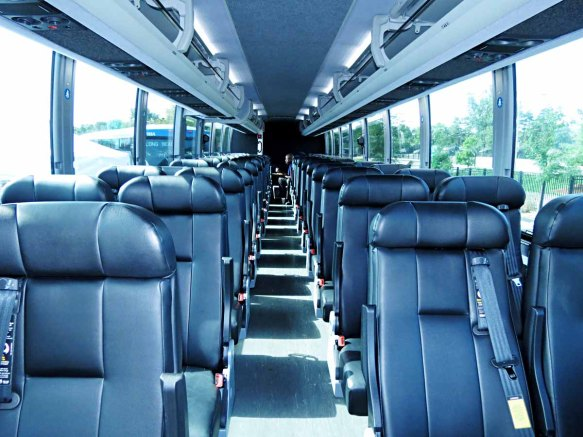 Bus Drivers Chilling, All Back of the Bus
