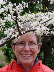 Anne's Wreath of White Redbud