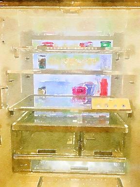 TV in the Refrigerator