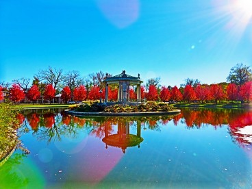 Pagoda Circle at Full Fall Foliage Height