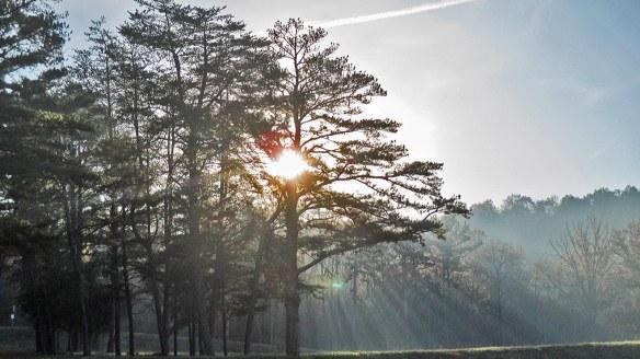 Ozark Dawn