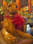 Fox Lion