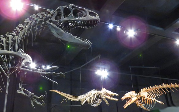Holiday Monsters – Allosaurus and Archaic Whales