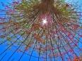 Getty Bougainvillea Rebar Tree