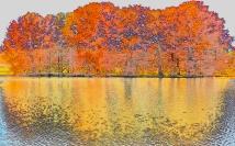 Autumn Cedars