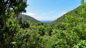 View from Centerline Road to Reef Bay